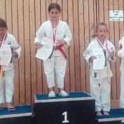 Hessischen Judomeisterschaften