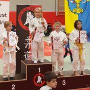 Nikolausturnier des Judo Club Elz